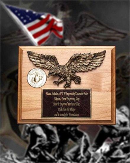 8 X 10 Eagle Medallion