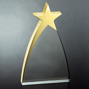 OCAA936L - Large Gold Star Award