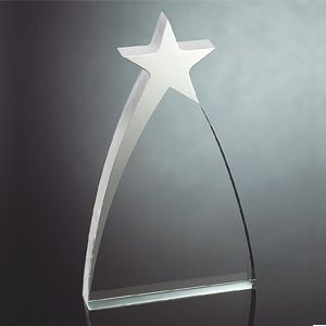 OCAA936M - Medium Silver Star Award