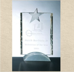 OCPRC8119 - Metal Star Award Vertical